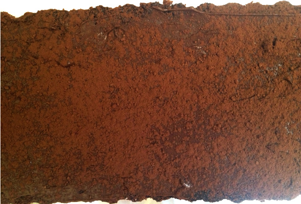 gateau-chocolat-simple-felder
