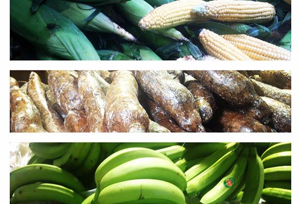 noailles-marseille-afrique