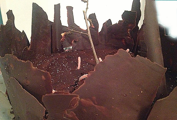 halloween-gateau-chocolat