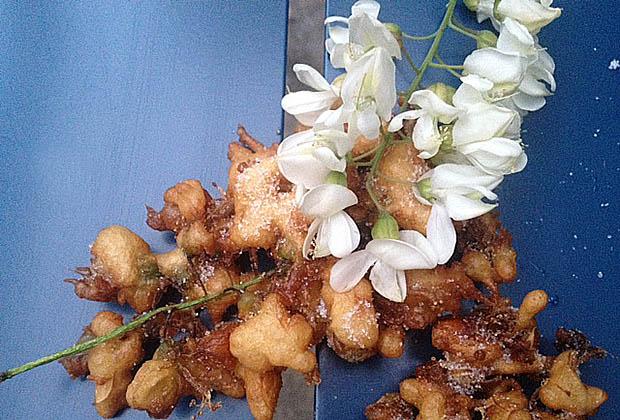 beignets-fleur-acacia