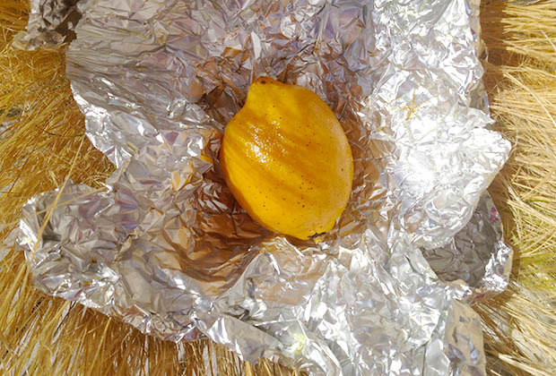 citron-confit-pierre-gianetti