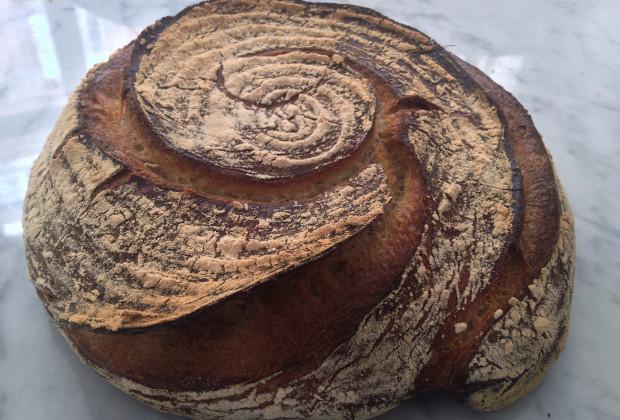 tronche-de-pain