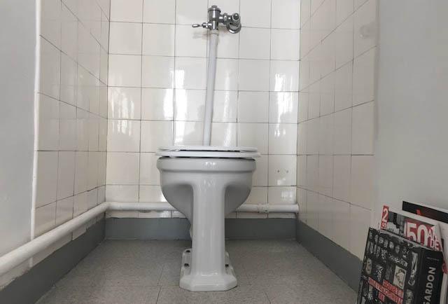 journee-nationale-des-toilettes