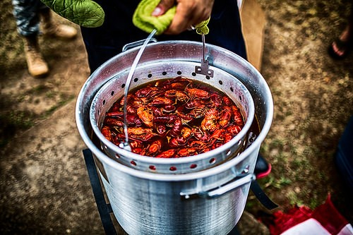 Bucket of Crawfish . ©Johnny Silvercloud