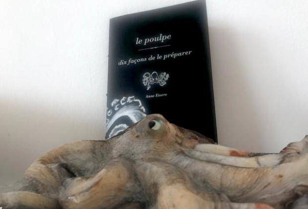 le-poulpe-dix-facons-de-le-preparer-anne-etorre