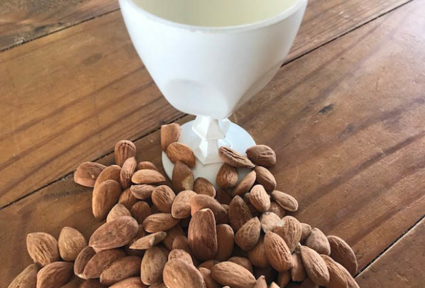 lait-vegetal-extracteur